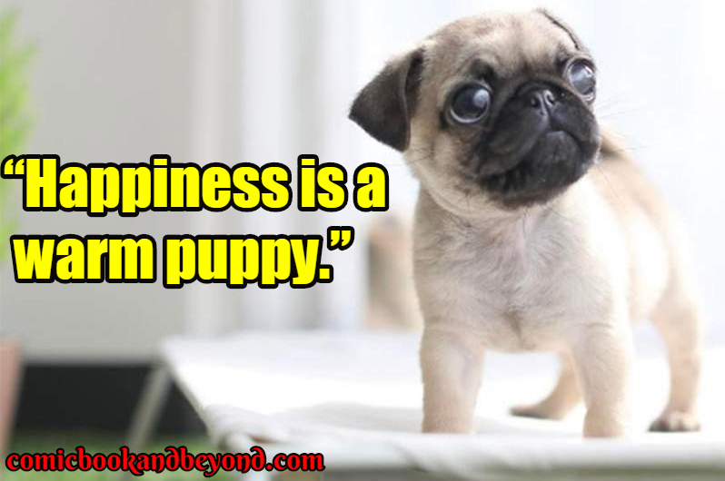 dog famous quotes
