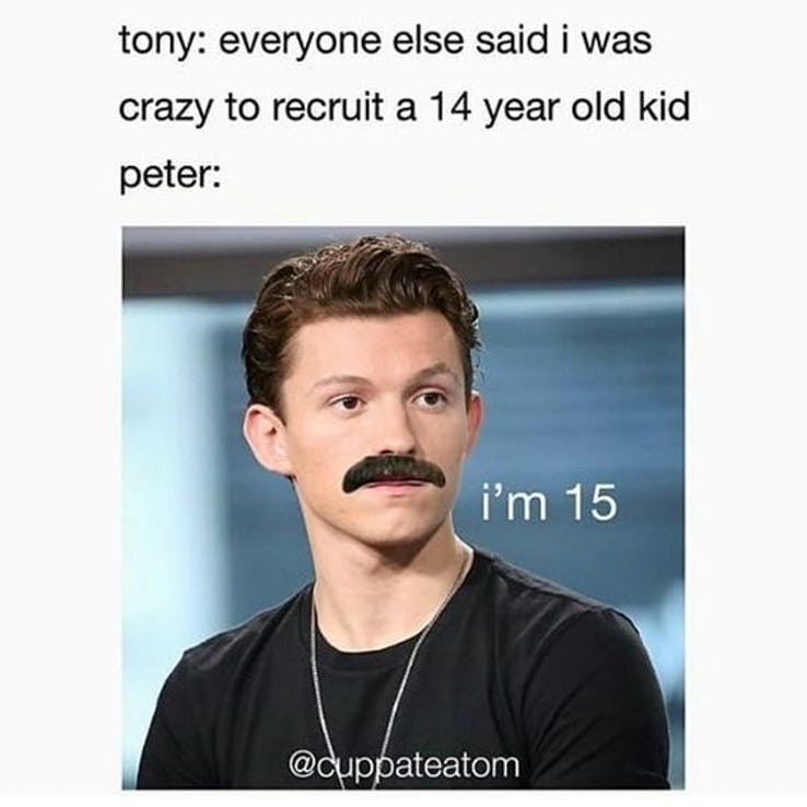 25 Funny Spider Man Vs Iron Man Memes Only For Genuine Mcu