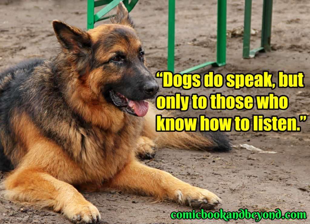 dog best quotes