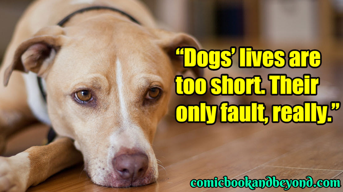 110+ Dog Quotes That All Dog Lovers Will Relate To - Comic Books
