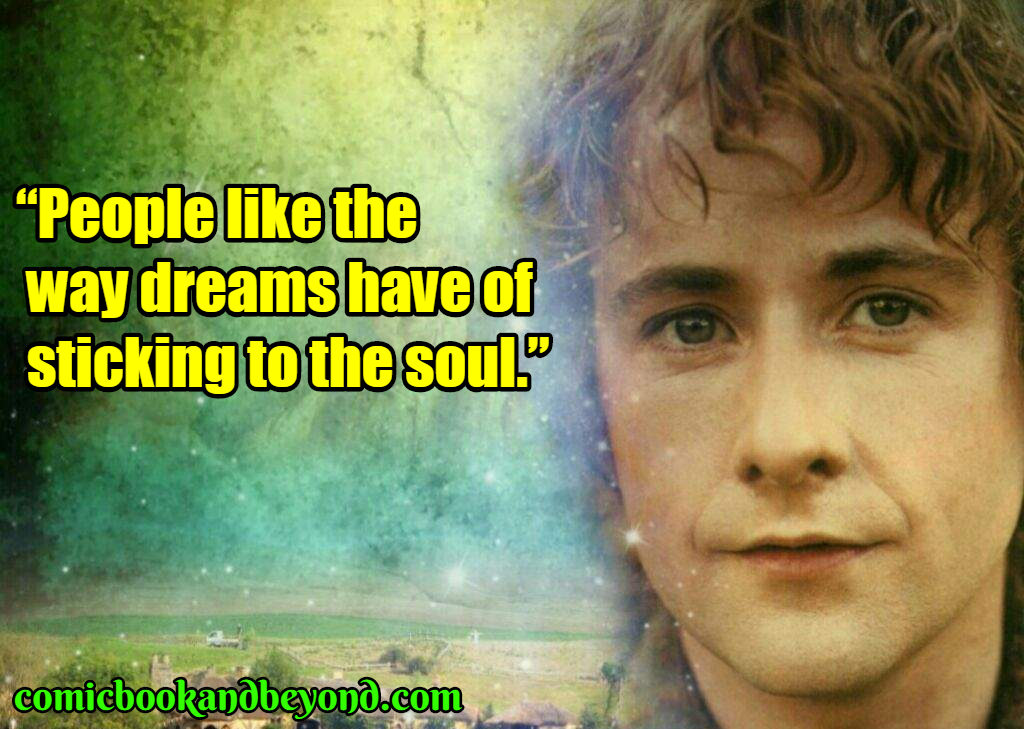 Peregrin Took best quotes