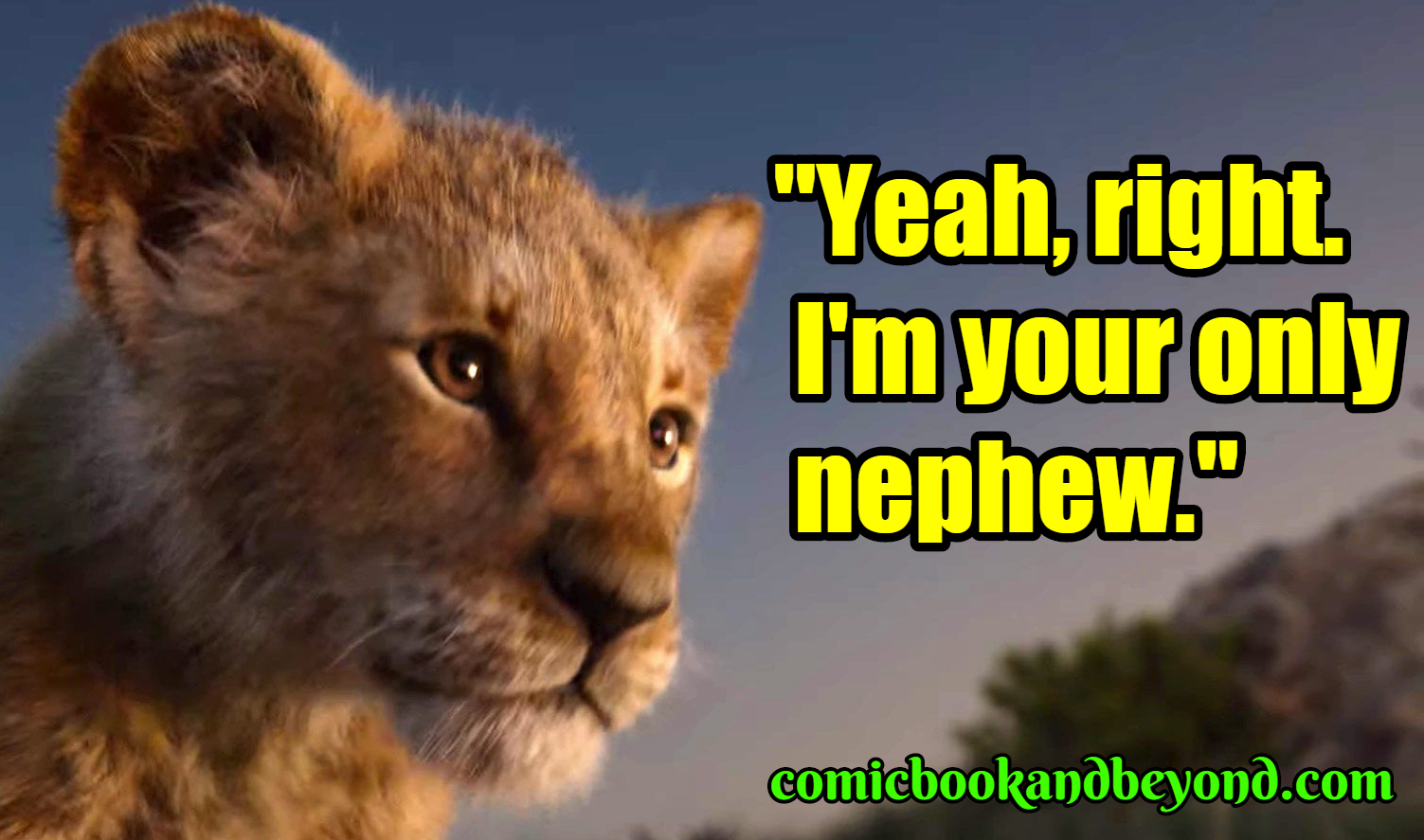 140 Simba Quotes From The Lion King Movie Comic Books