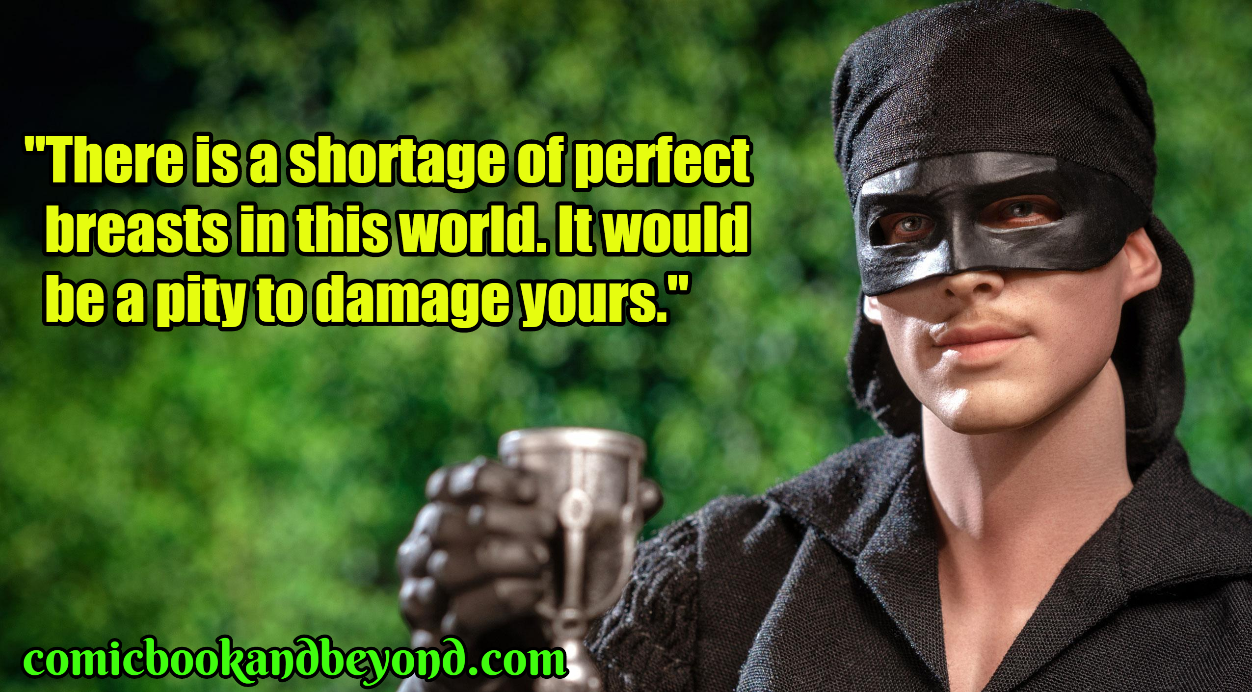 60+ Westley Quotes From The Princess Bride Movie - Comic ...