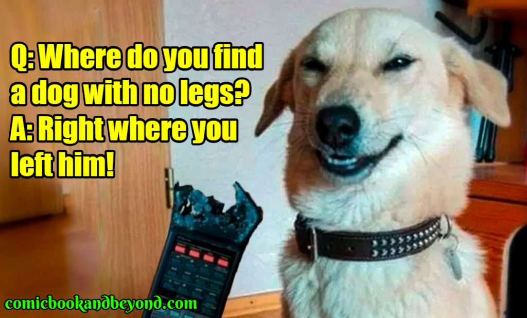 funny dog jokes