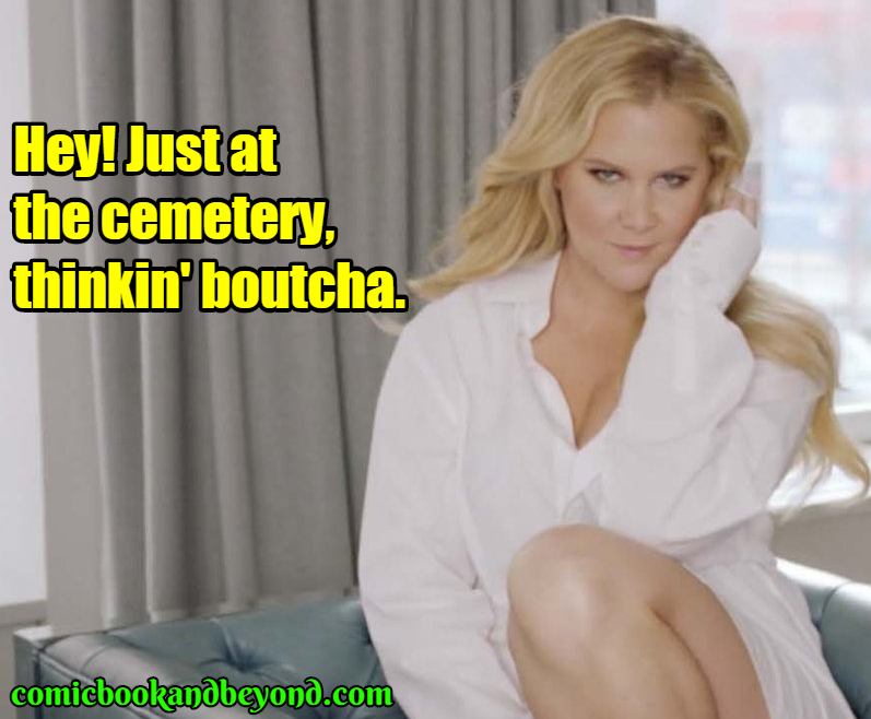 best amy schumer stealing jokes